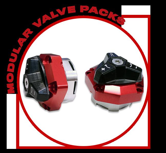Modular Valve Packs